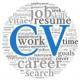CV advies