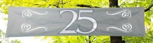 25zilver