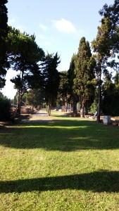 Via Ostia